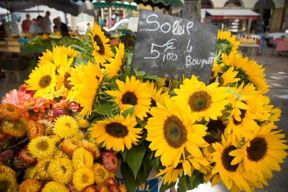 Sunflowermarket72
